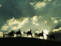 Camel Rides, Arabian Dining Sand dunes